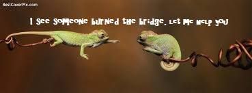 Burning the Bridge Behind You -- a Parable about Mercy and the Pursuit of Truth
