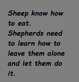 sheepeat