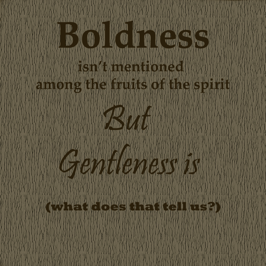 The Fruit of the Spirit Pt 4 - Gentleness