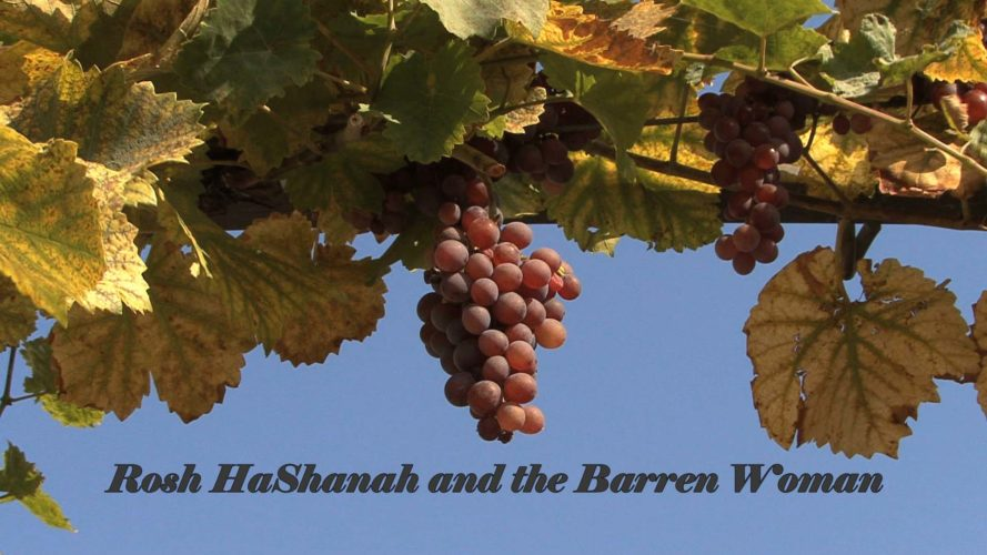Rosh HaShanah and the Barren Woman