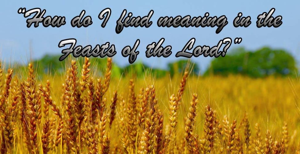 "Question: ""How Do I Find Meaning in the Feasts of the Lord?"""