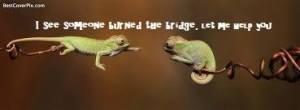 bridgeburned